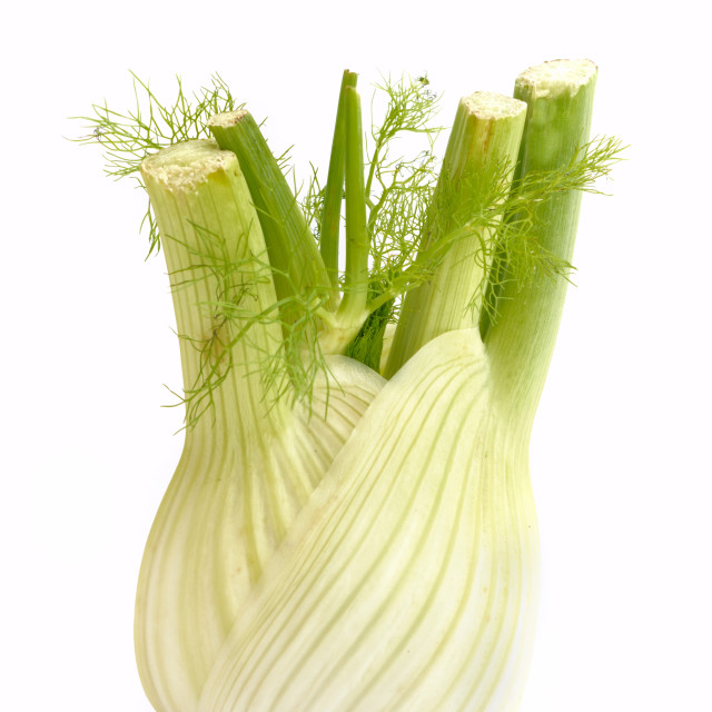 """fennel"" stock image"