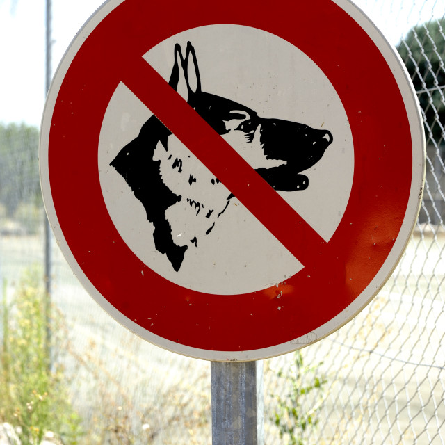 """Panel prohibited with the dog"" stock image"