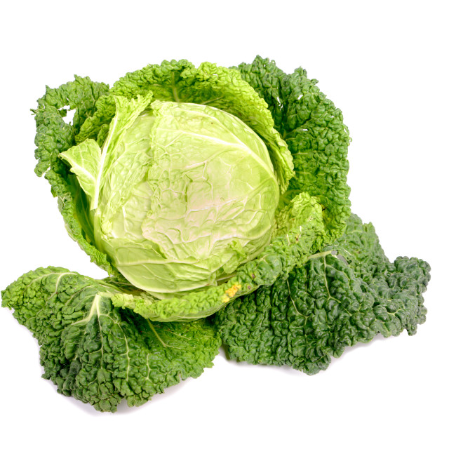 """""""cabbage."""" stock image"""