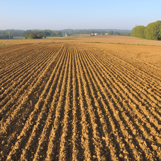 """furrows in land"" stock image"