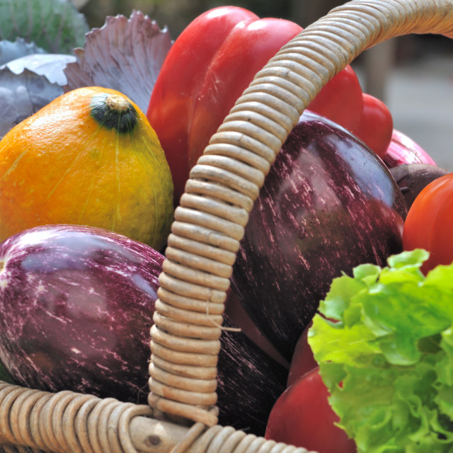 """vegetable in a basket"" stock image"
