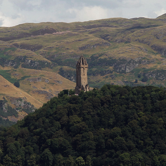"""William Wallace monument"" stock image"