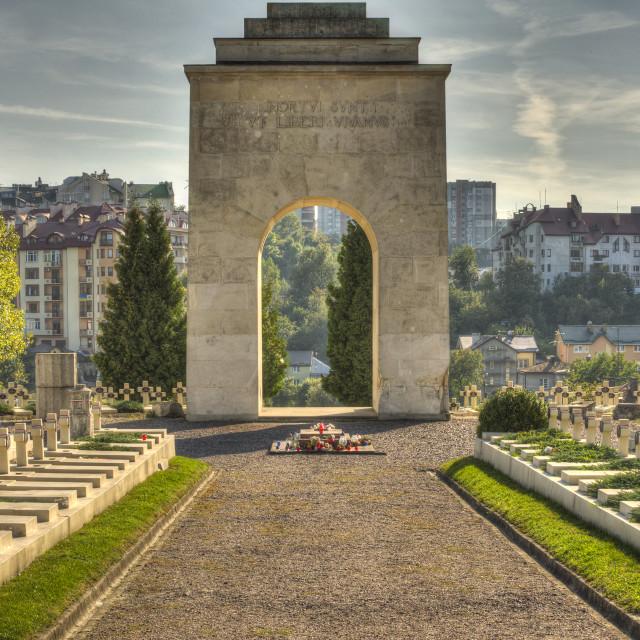 """""""Lychakiv Cemetery, Lviv"""" stock image"""