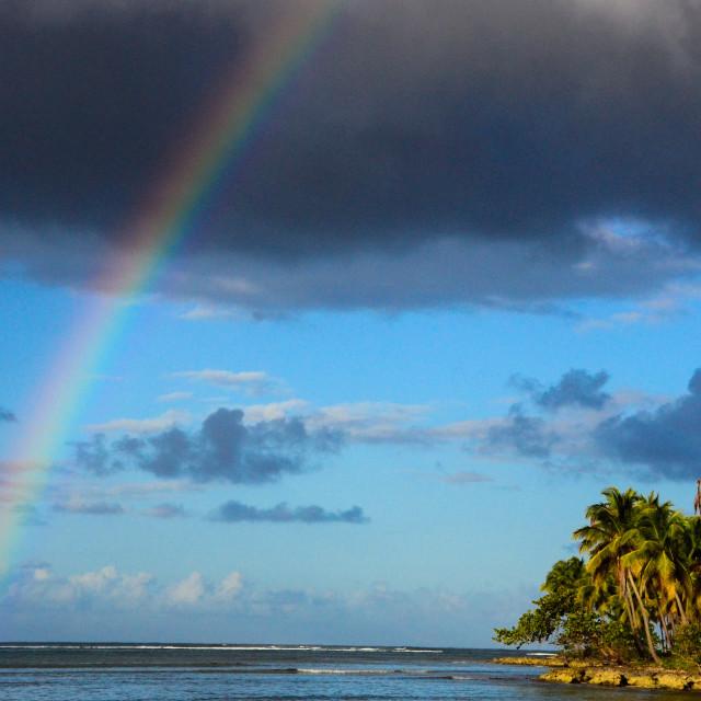 """Rainbow in Paradise"" stock image"