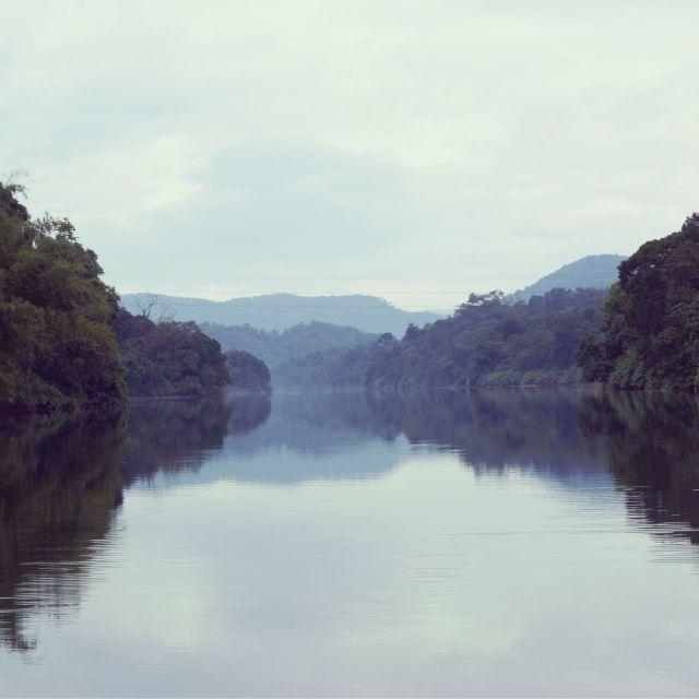 """Serene lake in the jungle, Kerala"" stock image"