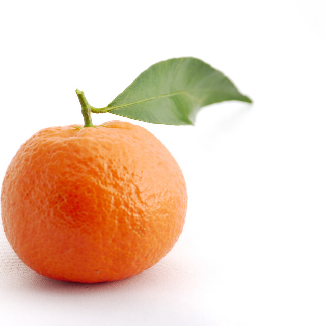 """""""Clementine"""" stock image"""