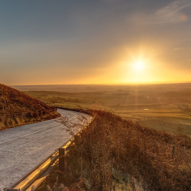 """""""Sunrise on the Fern"""" stock image"""