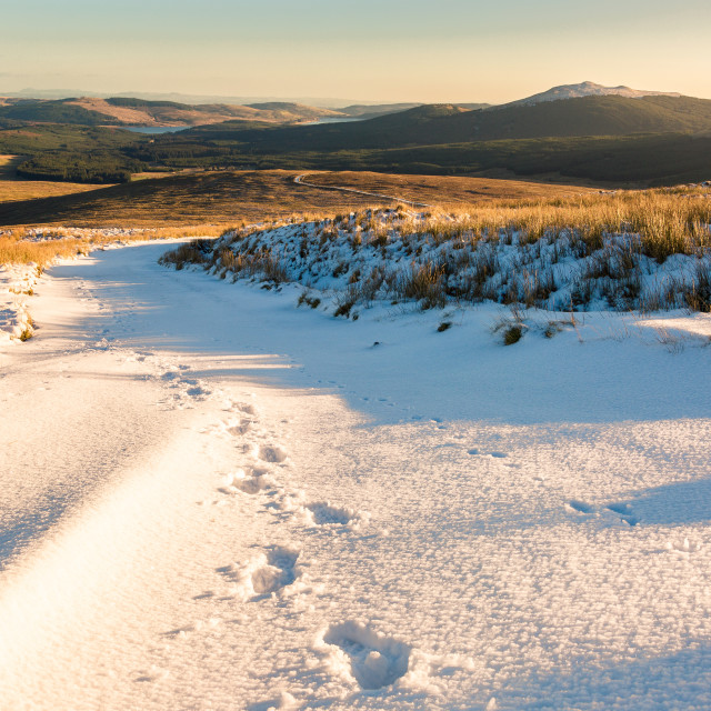 """""""Footsteps in the Snow"""" stock image"""