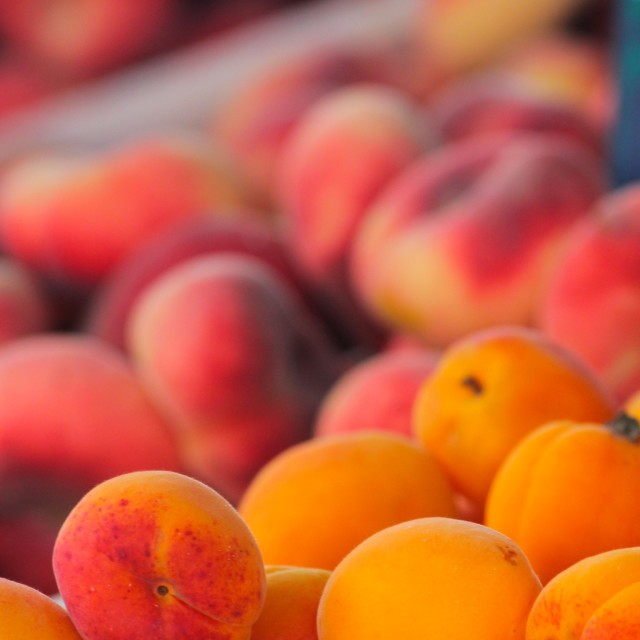 """Peaches and Nectarines"" stock image"