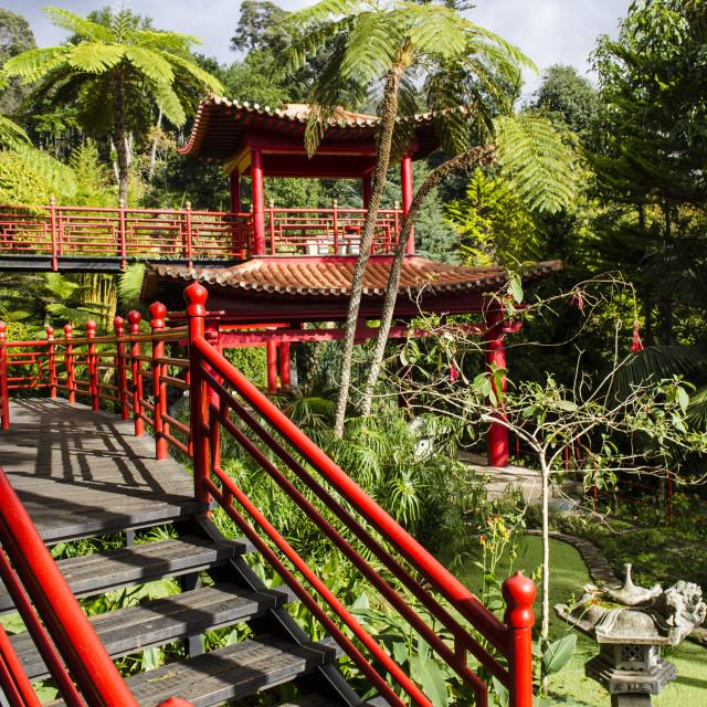 """Oriental Garden"" stock image"