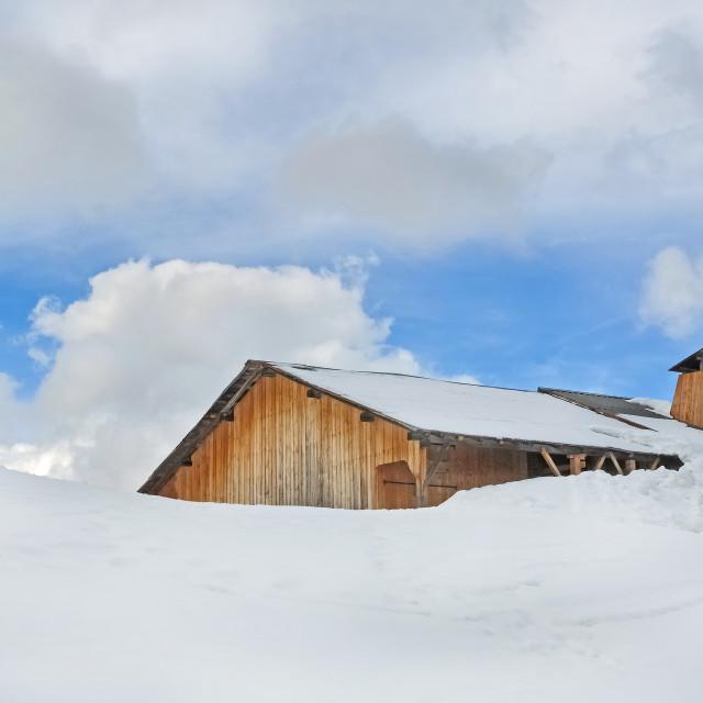 """""""snowfall"""" stock image"""