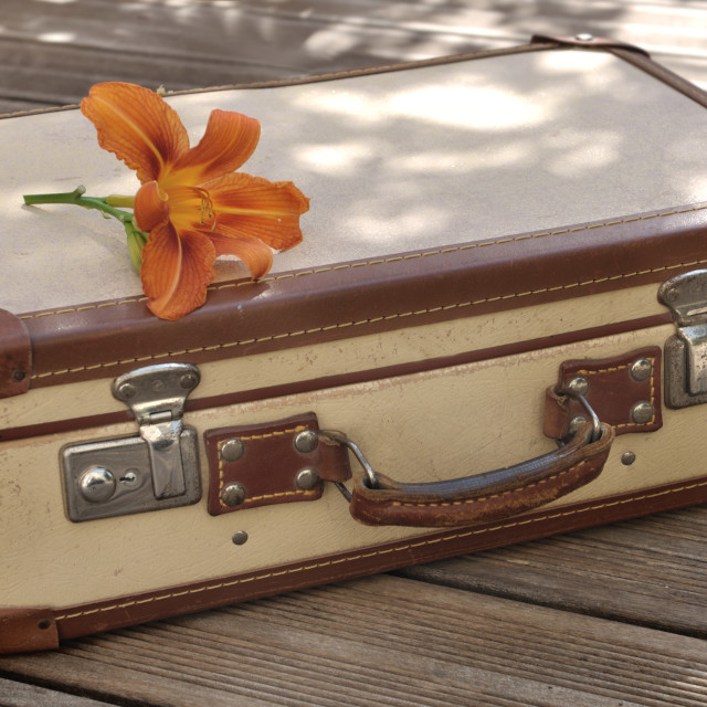 """small retro suitcase"" stock image"