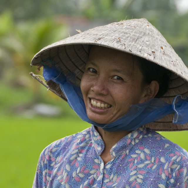 """Rice Paddy Worker"" stock image"