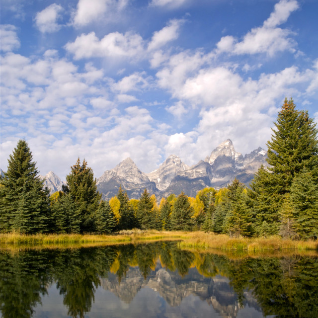 """The Schwabacher Ponds"" stock image"