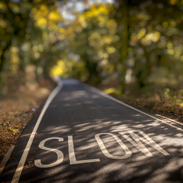 """Slow Sign Painted in the Road on a Country Lane"" stock image"