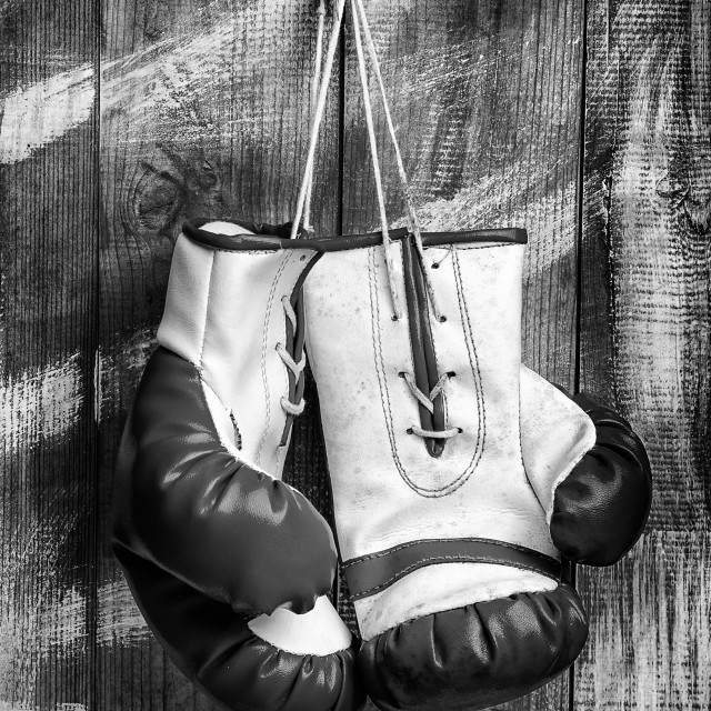 """""""Pair of Boxing Gloves"""" stock image"""