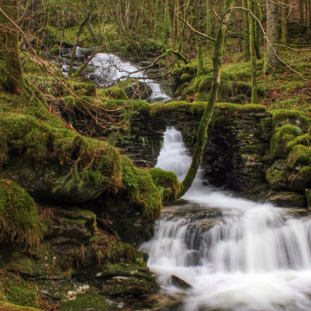 """Hiking the Norwegian woods and crossing waterfalls"" stock image"