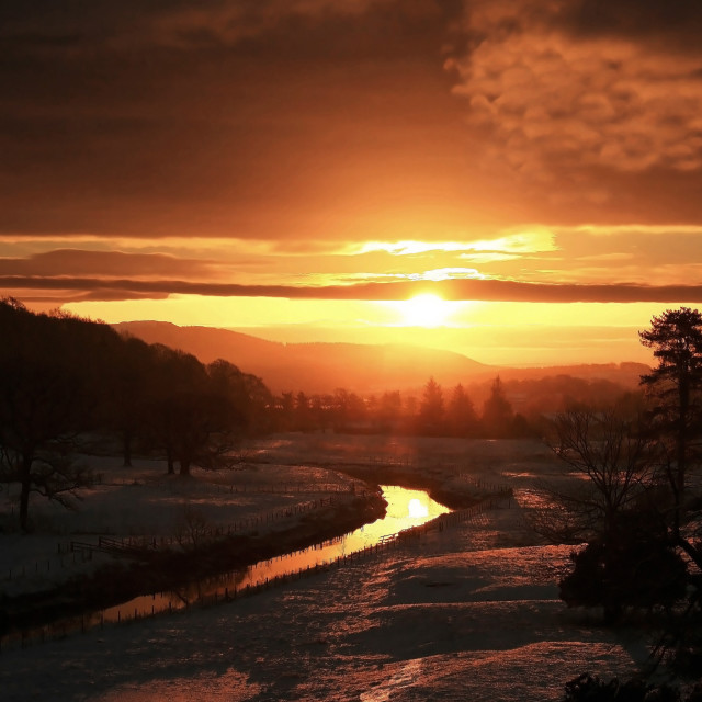 """Christmas Dawn"" stock image"