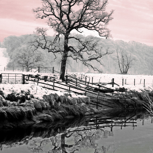 """A Winters Dawn"" stock image"