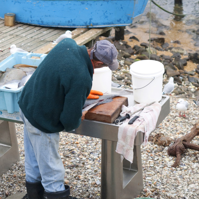 """Man preparing fish outdoors"" stock image"