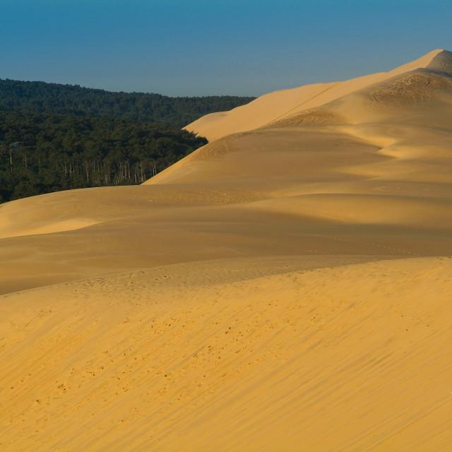 """""""Dune du Pilat-Bassin d'Arcachon-France"""" stock image"""
