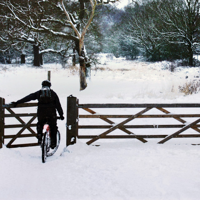 """Snowy Winter Scene with Cyclist"" stock image"