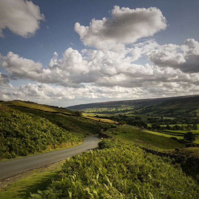 """""""A Country lane - North Yorkshire Moors"""" stock image"""
