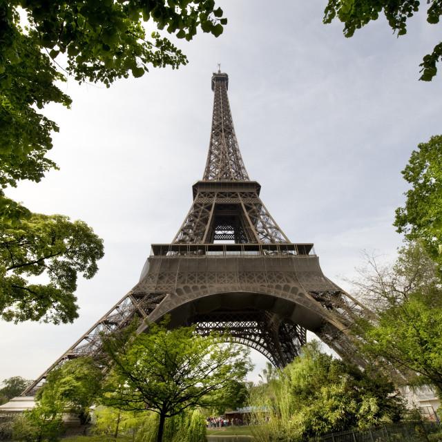 """PARIS EIFFELTOWER"" stock image"