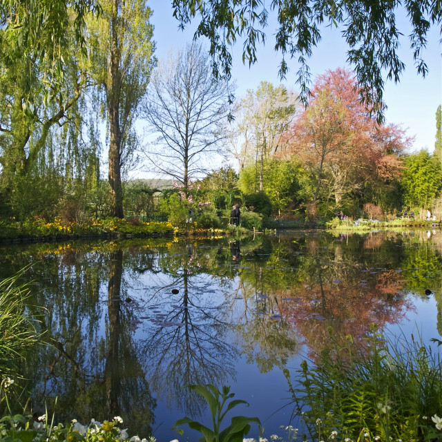 """Spring water garden at Giverny"" stock image"