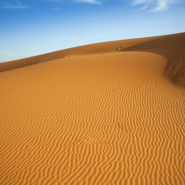 """""""Sahara dunes"""" stock image"""