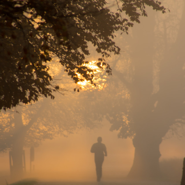 """Morning Run"" stock image"
