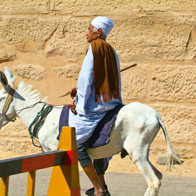 """""""Egypt, Nile Valley, Luxor area, Thebes-Donketyand Rider"""" stock image"""