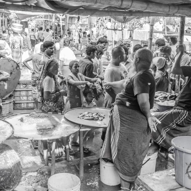 """Karwan bazar fish market"" stock image"