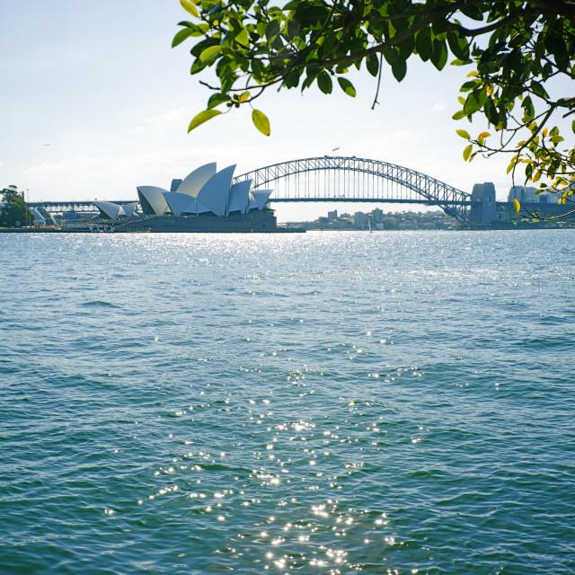 """""""Sydney Opera House"""" stock image"""