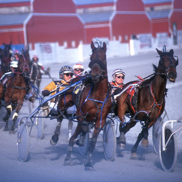 """Harness Racing - turn 3"" stock image"