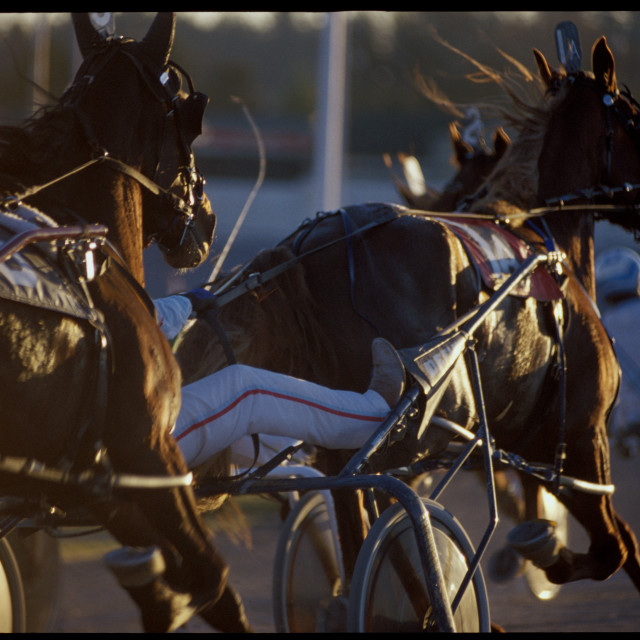 """Harness Racing: Passing on the outside"" stock image"