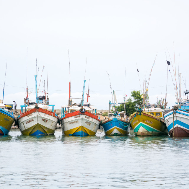 """""""Fishing boats in Tangalle port"""" stock image"""