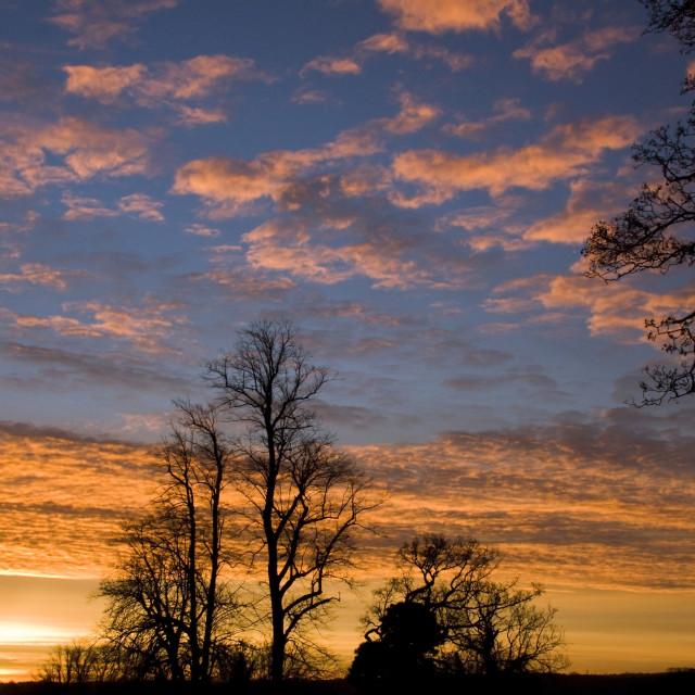 """""""Surrey Sunrise"""" stock image"""