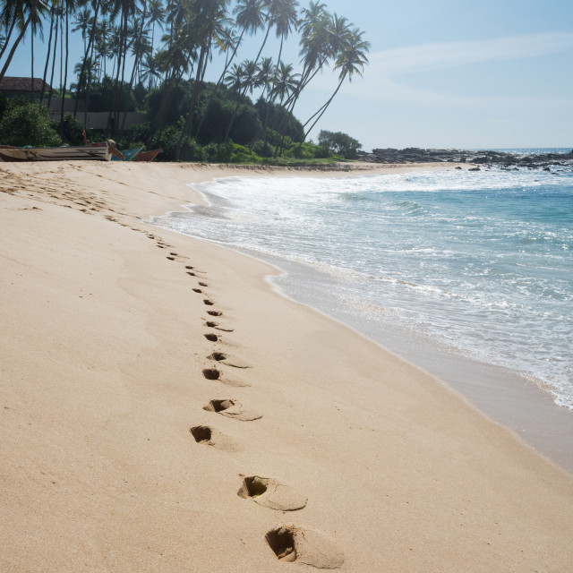 """Footprints on paradise beach"" stock image"