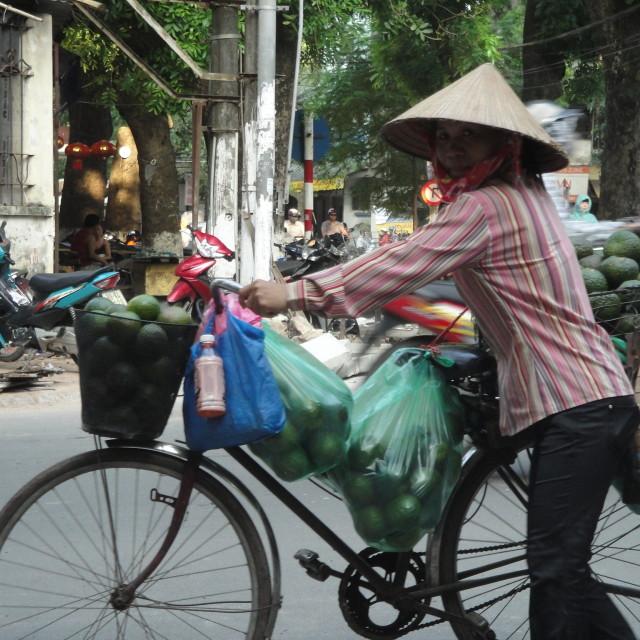 """""""Vietnamese fruit seller"""" stock image"""