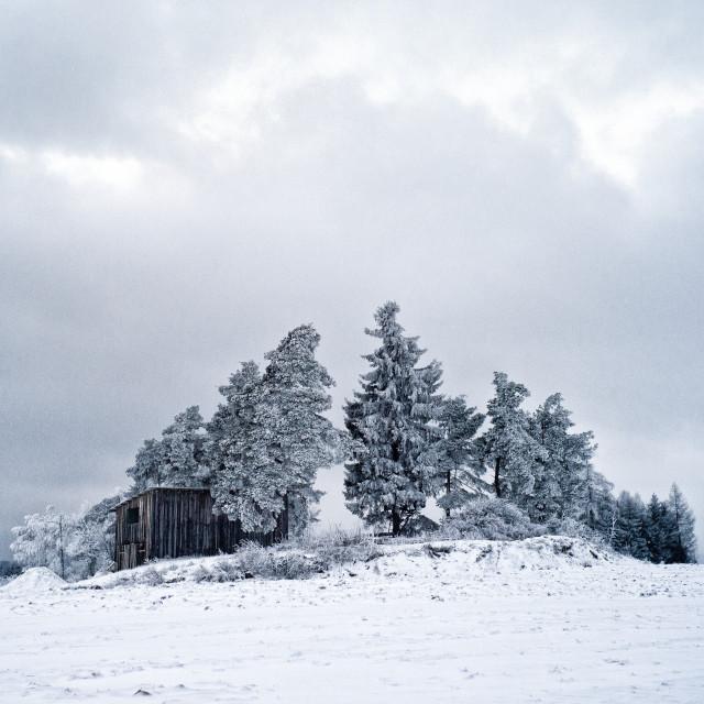 """Winter shack"" stock image"