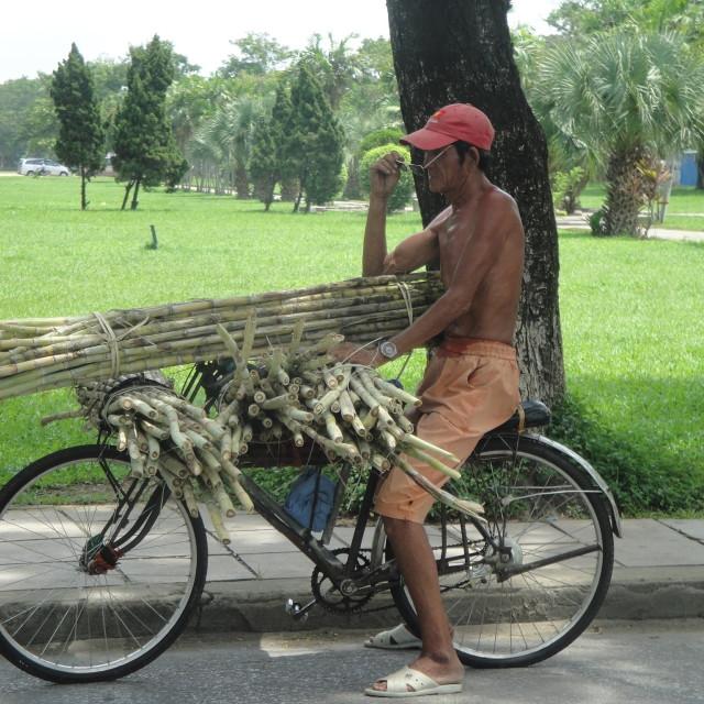 """""""bamboo trader"""" stock image"""