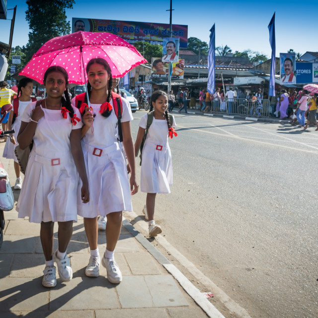 """Schoolgirls in white uniforms"" stock image"