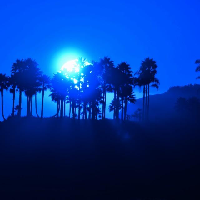 """Infrared Sunset"" stock image"