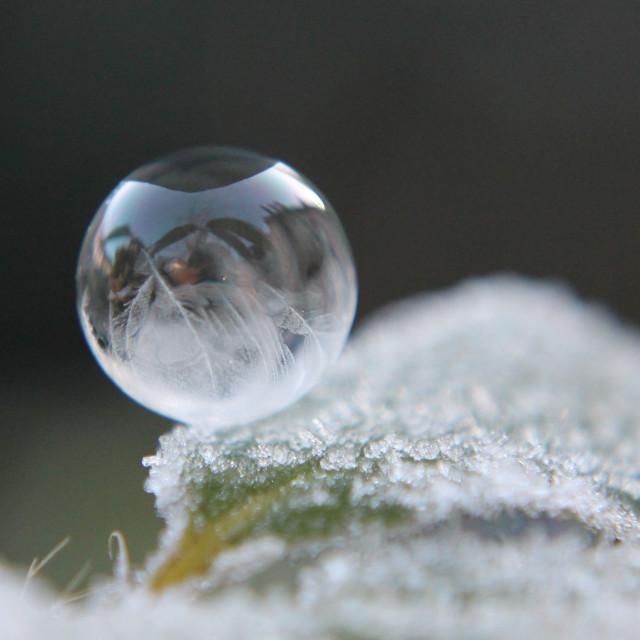 """""""frozen bubble"""" stock image"""