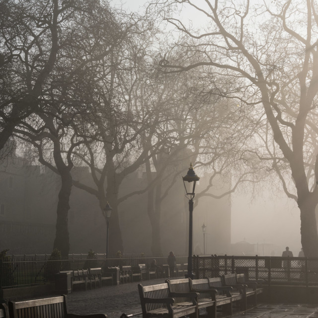 """London Fog"" stock image"