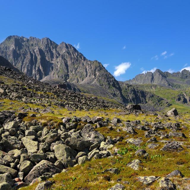 """mountain tundra"" stock image"