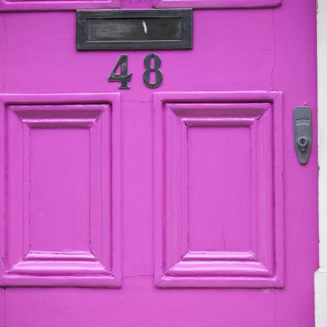 """""""Pink Front Door"""" stock image"""