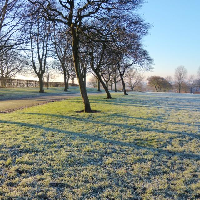 """A Winter Landscape."" stock image"