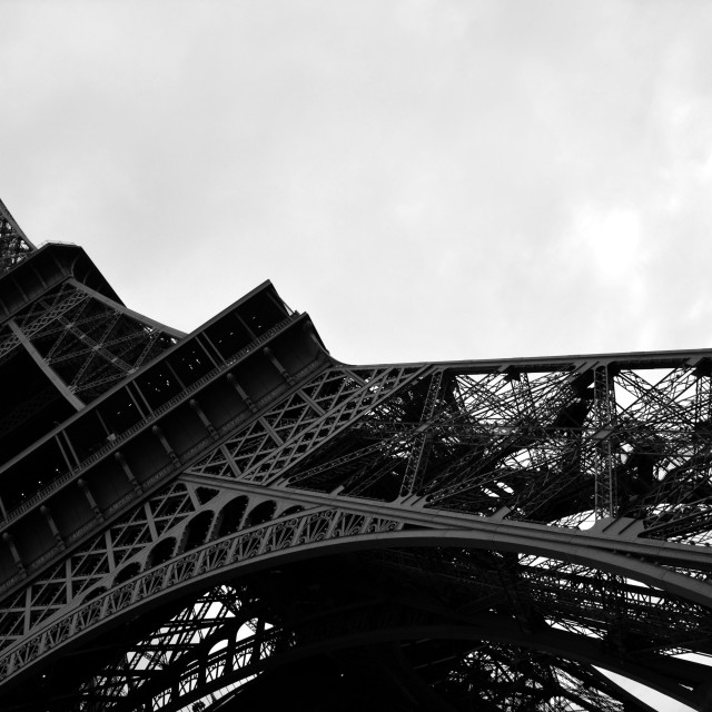 """Eiffel tower with trees"" stock image"